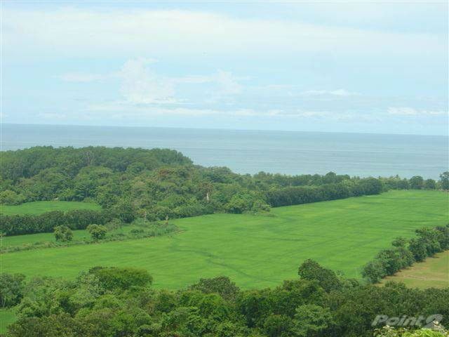 Exploitation agricole à vendre en Beachfront Development Land - 517 Acres, Dominical, Puntarenas ,60602  , Costa Rica